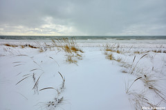 Untouched (mswan777) Tags: winter sky lake snow storm cold ice beach nature water grass weather clouds nikon waves outdoor michigan great lakes scenic sigma 1020mm d5100