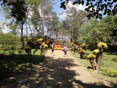 Easy rider to Dalat306