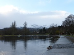 Eas Gobhain and Ben Ledi, Callander (luckypenguin) Tags: winter river scotland stirling perthshire ducks callander teith easgobhain