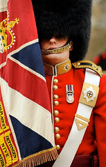 Soldier from No7 Company Coldstream Guards With Regimental Colours (demassimiliani) Tags: uk man male london hat soldier army uniform unitedkingdom military free parade marching british defense defence drill personnel bearskin ceremonial goc nonidentifiable coldmgds no7companycoldstreamguards generalofficercommanding londondistrictinspection