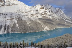 Canada, Peyto Lake (Vittorio Ricci (THANKS+++2.1 MILLIONS VIEWS)) Tags: canada peytolake canadianrockies banffnp