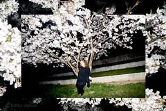 just for one day (Kthe deKoe) Tags: park flowers selfportrait munich mnchen cherry spring blossom selbstportrait frhling blten kirschblten