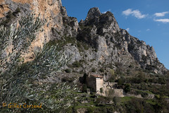 Moustiers Sainte Marie (G.Corsand) Tags: camera france color green nature colors digital rural 35mm lens landscape photo fuji photographer natural image tag vert bleu mount manuel instant fujifilm z f2 manual af provence midi campagne fujinon manualfocus paysages sudfrance couleur olivier sud olivetree astounding photographe autofocus objectif mditerrane xf x100 hybride fujix rurality hybridecamera fujix100 x100s x1oot xfsrie