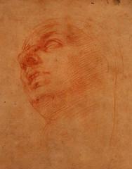 """Michelangelo – Studio di Testa per la Madonna del """"Tondo Doni"""" (studioferullo) Tags: arizona portrait art phoenix museum drawing michelangelo"""
