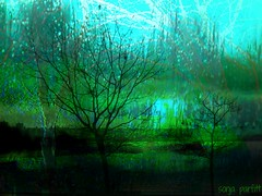 green valley (Sonja Parfitt) Tags: park trees manipulated layered