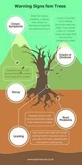 tree-warnings-infographic (Epic Tree Care) Tags: tree chainsaw tress pruning felling surgeon arborist