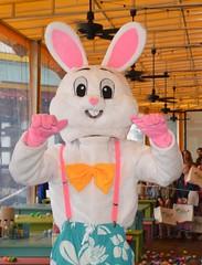 LuLu Easter Bunny 2016-3