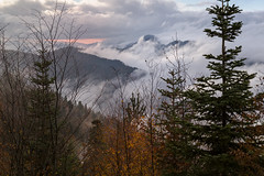 Magical landscape (RKAMARI) Tags: autumn trees colour fall nature fog forest nationalpark cities bolu yedigller greenscene