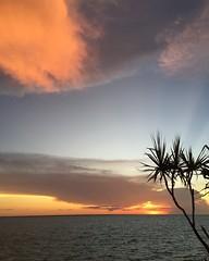 Darwin sunset (kelliejane) Tags: sunset nt australia darwin palm northernterritory skycity 2016 mindilbeach kelliejane darwinskycity