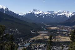 Banff, Tunnel Mountain Hike, April 9 2016 (40)_e_apr_11_16 (Velates) Tags: canada mountains alberta rockymountains banffnationalpark