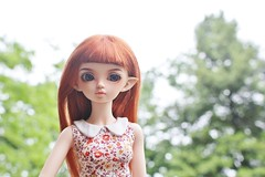 The Sky (AluminumDryad) Tags: trees doll thesky bjd resin fairyland msd juri balljointeddoll photochallenge mnf adad peterpancollar elfears minifee wigswap eventhead slimmini adolladay april2016 juri13