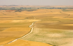 Comienzo de la Tierra de Campos (Lagavulin2) Tags: 2005 espaa paisajes verano cereales burgos caminodesantiago pisuerga castillaylen flaga ph232 canonixus300 tierradecampos lneasdefuga pamarillo tesodemostelares