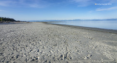 Saratoga Beach 2302 (kathypaynter.com) Tags: beach bc saratoga vancouverisland atthebeach campbellriver beautifulbc beachscenery saratogabeach vancouverislandscenery campbellriverscenery beautifulbcscenery