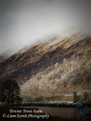 DSCN0143 (liamearth) Tags: trees mountain lake fish water clouds scotland argyll loch trout awe