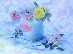 little vase with roses (Ani Carrington) Tags: blue roses stilllife purple vase ligth stillife