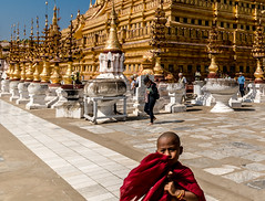 Shwezigon Pagoda, Myanmar (ravalli1) Tags: travel portrait people pagoda burma traditional religion buddhism monks myanmar paya shwezigon 2016 sigma1770 nikon7100