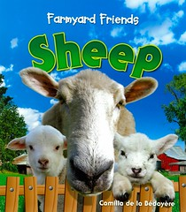 Sheep (Vernon Barford School Library) Tags: new school friends animal animals reading book high sheep farm library libraries reads books read paperback cover junior farms covers bookcover camilla middle vernon domesticanimals recent bookcovers nonfiction paperbacks grade3 farmyard barford softcover vernonbarford rl3 softcovers caprid delabedoyere farmyardfriends readinglevel camilladelabedoyere 9781595669414 9781595668967