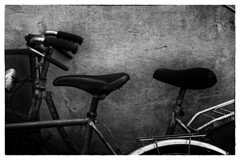 Ready to Ride (jfusion61) Tags: street city italy white black monochrome wall florence bikes bicycles