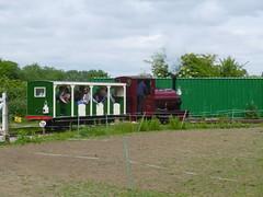 P1050712 (Hampton & Kempton Waterworks Railway.) Tags: loop devon galaday 2015 darent