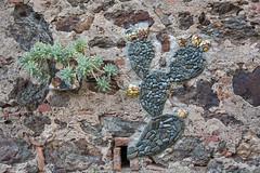 Porto Azzurro, Elba Island, Italy (Oleg.A) Tags: italy elba italia tuscany toscana isoladelba portoazzurro