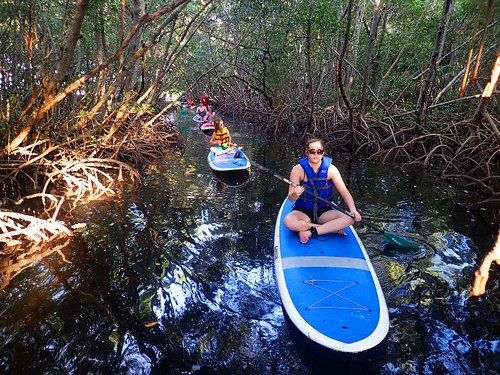 12_30_15 paddleboard tour Lido Key 02