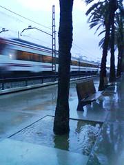 Pluja 4 - Jaume Sacasas