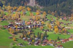 Berner Oberland, Schweiz (Juergies) Tags: schweiz shift tilt berner oberland