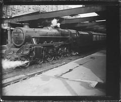 UK Train (gordon_morales) Tags: railroad glass train plate negative