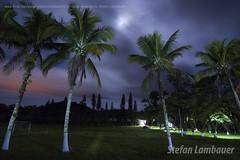 Pedro de Toledo (Stefan Lambauer) Tags: brazil sky moon nature field brasil night br interior sopaulo cu campo lua longaexposio coqueiros 2016 longexposition pedrodetoledo stefanlambauer