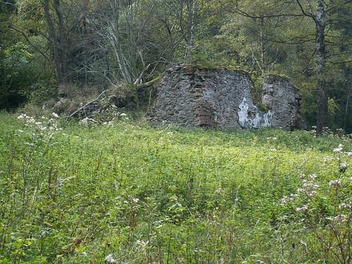 Ruina leśnictwa w pobliżu Przełęczy pod Bzowcem (668 m)