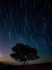 Wolwedans Trails (aaronvonhagen) Tags: africa nightphotography travel portrait selfportrait wanderlust astrophotography portraiture namibia startrails selfie travelphotography nightskies wolwedans vancouverphotographer shotoncanon 5dmarkiii adventureisoutthere aaronvonhagen avhphoto