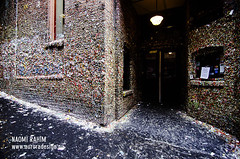 Seattle Gum Wall (Naomi Rahim (thanks for 2 million hits)) Tags: seattle door travel usa wall facade america buildings gum washington nikon theatre chewy entrance roadtrip wanderlust pacificnorthwest wa pikeplacemarket bubblegum pnw quirky offbeat gumwall 2015 travelphotography 1116mm nikond7000
