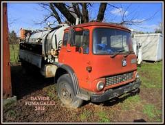 Bedford TK (DaveFuma) Tags: old truck bedford lorry camion tk epoca lkw autocarro