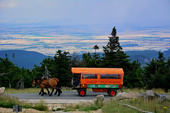 On top of the Brocken  (Capelle Panda -- Be happy!) Tags: horse nationalpark carriage brocken   landcapes  blocksberg d7100 afs18105