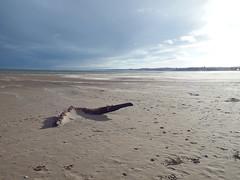 West Sands St Andrews (nz_willowherb) Tags: sea beach scotland sand wind fife offshore standrews windblown westsands sandblown