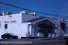 Los Angeles La brea tar pits  (1 of 50) (frank j skokoski's green ridge photography) Tags: california losangeles tar tarpits labreatarpits
