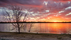 Sunset Tree (JChipchase) Tags: lake australia perth yangebup