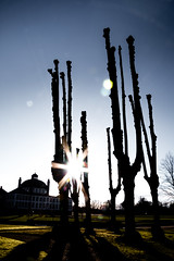 The Sun, the Castle, the Trees, and Me (Niels A) Tags: trees sun shadows silhouettes rays fredensborg fredensborgcastle import20160213