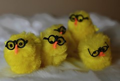 Smart Little Chickies (Lawdeda ) Tags: color chicken yellow easter glasses duck with little ducks ducklings duckies picmonkey
