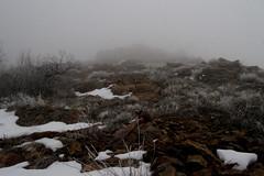 DSC_8420 (videopelli2010) Tags: winter mountain snow cold fog utah shoreline trail inversion ogden bonneville fatbike