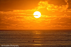Manly Sunrise (darrinwalden Photography) Tags: ocean orange sun water yellow sunrise warm glow manly sydney paddle