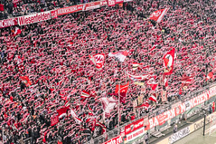 (cb.photography) Tags: red rot scarf munich mnchen logo bayern flag banner arena fans fc fahne darmstadt flagge cheering applause jubel allianzarena fcbayern allianz schal fcbayernmnchen sdkurve dfb dfbpokal svdarmstadt