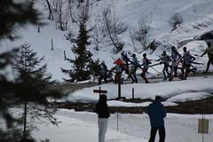 skitrilogie2016_012 (scmittersill) Tags: ski sport alpin mittersill langlauf abfahrt skitouren kitzbhel passthurn skitrilogie