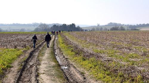 Wandelen in de Vlaamse Ardennen