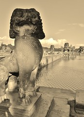 lion of Angkor Wat (SM Tham) Tags: water monochrome statue stone sepia outdoors temple cambodia khmer lion angkorwat unescoworldheritagesite ripples angkor moat guardian causeway suryavarmanii