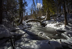 Old man winter (JD~PHOTOGRAPHY) Tags: winter snow ontario nature landscapes rapids snowfall oldmanwinter waterlandscapes limehouserapids winteryscenes