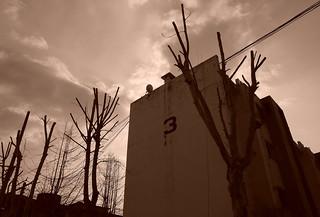 Korea Daegu stark brutalist architecture amid bare trees -