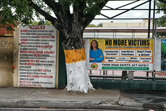 Road Safety & Drug Awareness Adverts (Tom Willett) Tags: advertising stjohns hoarding antigua advert caribbean westindies antiguabarbuda