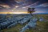 Winskill Stones Nature Reserve sunset ({MrsB}) Tags: sunset landscape yorkshire limestone winskillstones