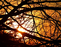 Craobhga (Keith Mac Uidhir  (Thanks for 3.5m views)) Tags: morning ireland red sky dublin orange sun yellow sunrise atardecer dawn tramonto himmel irland ciel cielo dublino irlanda irlande ierland irska dubln irlandia lirlanda irsko  airija irlanti  cng  iirimaa ha     rorszg         rlnd
